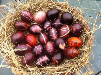 Alle Eier haben unsere Hühner gelegt.